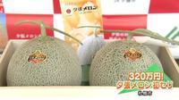 Yubari King, melon seharga mobil mewah (elitereaders)