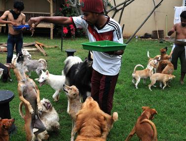 20160828-Relawan Hewan Terlantar-Tangerang