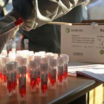 Petugas medis menata sampel penumpang KRL Commuter Line saat tes swab dengan metode polymerase chain reaction (PCR) di Stasiun Bekasi, Selasa, (5/5/2020). Pemkot Bekasi melakukan tes swab secara massal setelah tiga penumpang KRL dari Bogor terdeteksi virus corona. (Liputan6.com/Herman Zakharia)