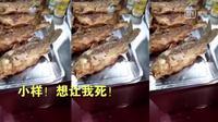 Ikan goreng yang siap disajikan tiba-tiba bergerak sendiri, hidup lagi? (Iqiyi)