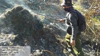 Petugas gabungan memadamkan kebakaran Gunung Sumbing dengan peralatan manual, Senin siang (12/8/2019). (Foto: Liputan6.com/BPBD Wonosobo/Muhamad Ridlo)