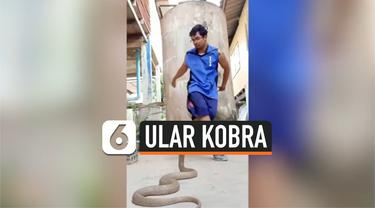 kobra breakdance