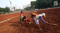 Pekerja mencangkul tanah untuk menyelesaikan pengerjaan proyek revitalisasi Lapangan Banteng di Jakarta Pusat, Rabu (1/11). Pemprov DKI Jakarta melakukan revitalisasi Lapangan Banteng yang dibagi menjadi tiga segmen. (Liputan6.com/Immanuel Antonius)