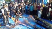 Setelah dibakar, ribuan bibit dan pohon kurma itu ditimbun di dalam tanah. (Liputan6.com/Reza Efendi)