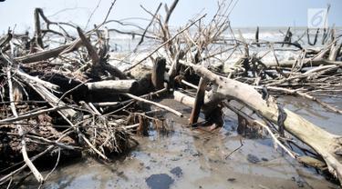 Tumpahan Minyak Pertamina Cemari Perairan Muara Gembong