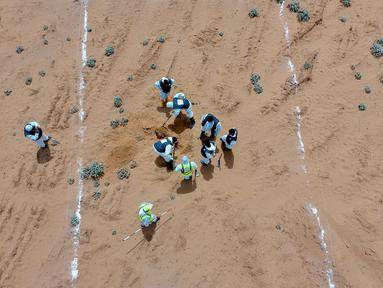 Foto dari udara memperlihatkan tim pakar bekerja di lokasi kuburan massal di Kota Tarhuna, Libya, Selasa (23/6/2020). Direktur Departemen Pencarian Jasad Lutfi Al-Misurati mengatakan 10 jasad tak dikenal ditemukan di kuburan massal Kota Tarhuna. (Xinhua/Hamza Turkia)