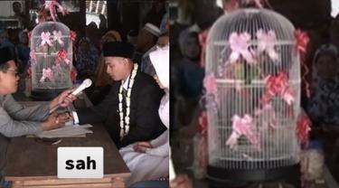 Viral Pasangan Ini Menikah Dengan Mahar Sepasang Burung Lovebird
