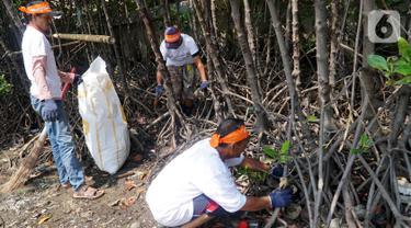 Relawan membersihkan sampah plastik yang mengotori kawasan Pantai Marunda, Jakarta, Rabu (18/12/2019). Kampanye bebas sampah plastik Astra Financial Coastal Cleanup #MarundaGUE berkomitmen mendukung program pemerintah untuk mengurangi penggunaan plastik. (Liputan6.com/HO/Eko)