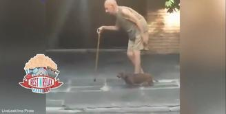Anjing Ini Tuntun Seorang Lansia Berjalan