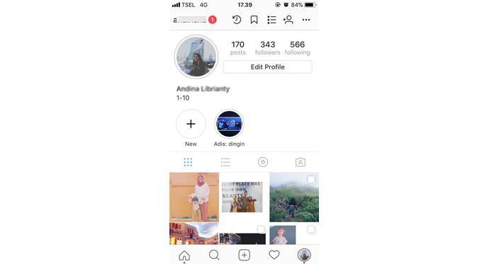 Tampilan profile Instagram (Foto: Ist)