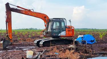 Alat perambah hutan menjadi kebun sawit yang disita Reskrimsus Polda Riau di Kabupaten Bengkalis.