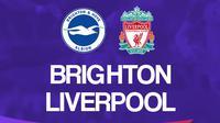 Liga Inggris: Brighton and Hove Albion Vs Liverpool. (Bola.com/Dody Iryawan)