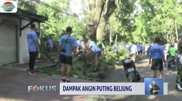 Pasca-bencana angin puting beliung Kamis petang, petugas BPBD dan Tagana butuh bantuan untuk melakukan pembersihan dan evakuasi pepohonan yang tumbang.