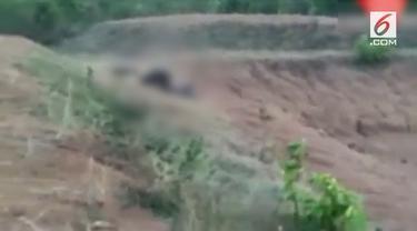 Seorang pria India diserang oleh beruang setelah ia dilaporkan mencoba berswafoto dengan hewan itu. Insiden ini terjadi di di distrik Nabarangpur, Odisha di India.
