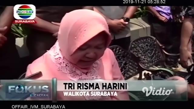Dalam sepekan terakhir, bunga Tabebuya mekar indah di sepanjang jalan protokol di Surabaya. Momen tersebut dimanfaatkan oleh Walikota Surabaya Tri Rismaharini, dengan mengajak seluruh Forkopimda Kota Surabaya berswafoto.