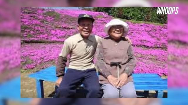 Sang suami menanam bunga Shibazakura selama 2 tahun agar bisa dicium istrinya.