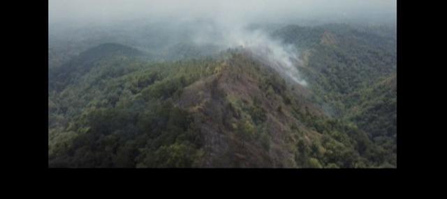 Lereng gunung kembali terbakar. Kali ini lereng Gunung Willis di Madiun, Jawa Timur.