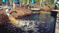 Sekat kanal gambut di Desa Bandar Sungai, Kecamatan Sabak Auh, Kabupaten Siak. (Liputan6.com/M Syukur)