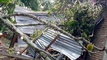 5 Kecamatan di Madiun Rawan Angin Puting Beliung