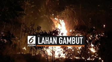 Lima hektare lahan gambut di Jalan Hiu Putih, Kota Palangka Raya, Kalimantan Tengah terbakar.