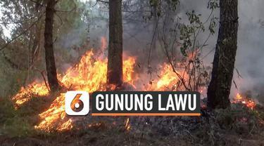 Kebakaran 14,7 hektar lahan di lereng Gunung Lawu berangsur-angsur sudah berhasil dipadamkan, namun api belum sepenuhnya padam. Petugas dengan berbagai cara terus berusaha mencegah api meluas.