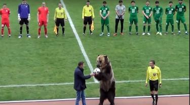 Seekor beruang sirkus bernama Tim masuk sebelum laga divisi tiga Rusia antara FC Angusht Nazran dan Mashuk-KMV di kota Pyatigorsk, Rusia, 15 April 2018. Tim memegang bola sebelum menyerahkannya pada wasit. (FC Angusht Nazran youtube channel via AP)