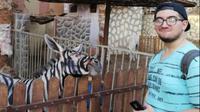 Keledai atau zebra? Kebun binatang di Mesir dituduh mengecat seekor keledai agar bermotif zebra, ternyata... (Mahmoud Sarhan via BBC)