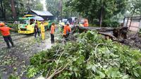Hujan deras dan angin kencang melanda sejumlah wilayah di Bogor, Jawa Barat, Sabtu (21/10/2019) sore. (Liputan6/Achmad Sudarno)