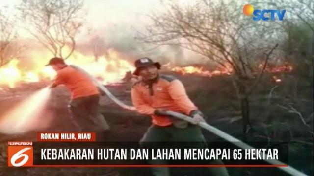 Puluhan hektar hutan dan lahan gambut di Provinsi Riau kembali terbakar. Kebakaran telah berlangsung sejak satu pekan terakhir dan belum berhasil dipadamkan.