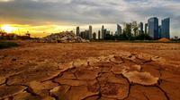Karbon dioksida bukan penyebab utama pemanasan global, menurut Dr Evans. (foto: Express)