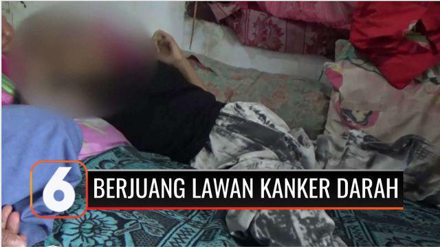Seorang remaja perempuan penghafal Alquran di Pandeglang Banten, kini harus berjuang melawan kanker darah yang dialaminya 7 bulan terakhir. Pengobatan terpaksa dihentikan karena keluarga tak memiliki biaya.