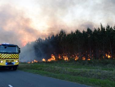 Kebakaran Hutan di Perancis