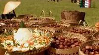 Berbagai kreasi dari pohon dan buah salak ditampilkan dalam Festival Salak Pondoh.