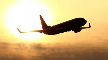 Ilustrasi Pesawat (AFP)