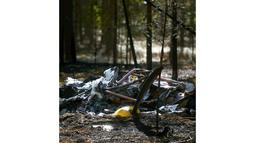 Pihak kepolisian setempat, Senin (21/4/2014), mengatakan delapan dari 11 penumpang pesawat Comp Air 8 yang jatuh di Jamijarvi, barat daya Finlandia, ditemukan dalam kondisi hangus. (REUTERS/Vesa Moilanen/Lehtikuva)