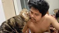 Seekor kucing sangat manja dengan suami majikannya. Sumber: BoredPanda