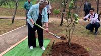 Menteri Inggris untuk Asia Pasifik, Heather Wheeler melakukan penanaman jeruk Bali sebagai simbol dibukanya misi Inggris untuk ASEAN. (Liputan6.com/Benedikta Miranti T.V)