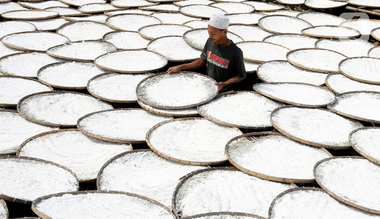 Pekerja menjemur tepung aci di Sukaraja, Kabupaten Bogor, Jawa Barat, minggu (20/6/2021). Pemerintah mengklaim hasil pelaksanaan program Pemulihan Ekonomi Nasional (PEN) klaster dukungan UMKM membantu mayoritas penerima manfaat dapat bertahan selama pandemi COVID-19. (Liputan6.com/Angga Yuniar)