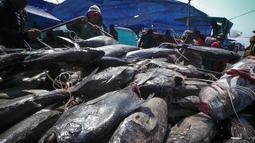 Sejumlah nelayan menurunkan ikan-ikan hasil melaut untuk dijual di kawasan Pelabuhan Muara Baru, Jakarta, Kamis (28/8/2014) (Liputan6.com/Faizal Fanani)