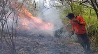 Personel tim gabungan pemadam kebakaran Gunung Arjuno bekerja keras untuk memadamkan api yang terus berkobar (BPBD Kota Batu)