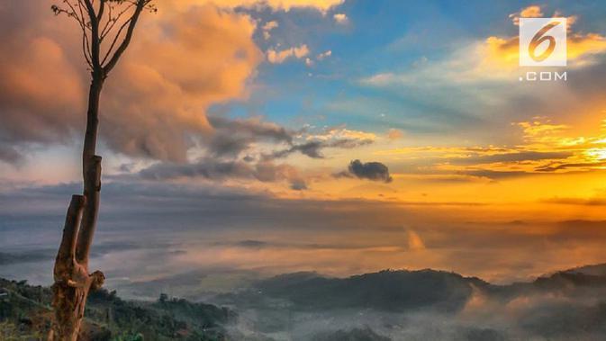 Menikmati alam sekitar Borobudur dari Punthuk Mongkrong di Kaliangkrik. (foto: Liputan6.com/felek wahyu)