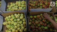 Pedagang memlilih buah apel di pasar induk Kramat Jati, blok buah di Jakarta, Minggu (2/2/2020). Produksi lokal dinilai perlu digenjot untuk meredam impor buah tropis yang masih berlangsung sampai saat ini. (Liputan6.com/Herman Zakharia)