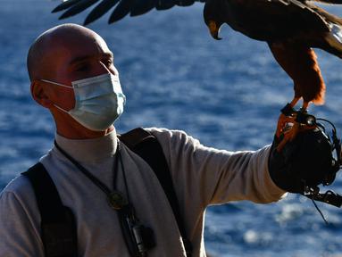 Pawang beserta burung elang harris peliharaannya berpartisipasi dalam acara demonstrasi berburu menggunakan burung elang di Wied iz-Zurrieq, Malta, 22 November 2020. Acara ini digelar untuk memperingati Hari Burung Elang Sedunia. (Xinhua/Jonathan Borg)