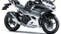 Kawasaki Ninja 250 punya dua warna berbasis silver dan hitam (Young Machine)