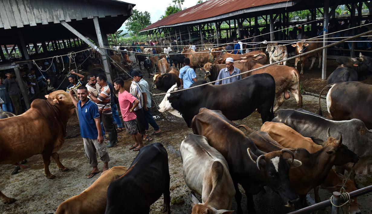 Orang-orang berkumpul di pasar yang menjual ternak menjelang perayaan Idul Fitri yang menandai berakhirnya bulan suci Ramadan di Sibreh, provinsi Aceh (20/5/2020). (AFP/Chaideer Mahyuddin)