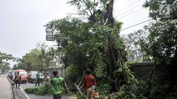 Petugas Suku Dinas Kehutanan Jakarta Timur menebang pohon lebat yang berada di pinggir Jalan I Gusti Ngurah Rai, Jakarta, Rabu (25/7). Penebangan pohon juga untuk membersihkan ranting yang menutupi rambu lalu lintas. (Merdeka.com/Iqbal Nugroho)