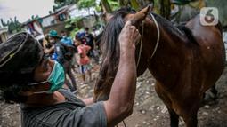 Pekerja memeriksa kuda delman sebelum diperiksa oleh dokter hewan KPKP di Jakarta, Kamis (4/2/2021). Kegiatan dilakukan untuk memberi bantuan pakan dan pemeriksaan kesehatan serta pengambilan sampel. (Liputan6.com/Faizal Fanani)