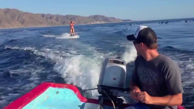 Seorang wanita yang sedang bermain wakeboarding di laut tiba-tiba dikelilingi oleh lumba-lumba.