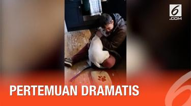 Seorang tunawisma akhirnya bertemu anjing kesayangannya kembali setelah hilang selama seminggu.
