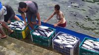 Sejumlah warga di Pelabuhan Pendaratan Ikan (PPI) Donggala mengangkut ikan-ikan hasil tangkapan para nelayan. (Foto: Tasman Banto).